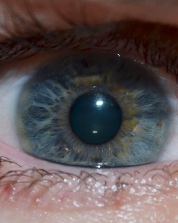 anatomy-of-the-eye-series-the-tear-film-lids-and-adnexa