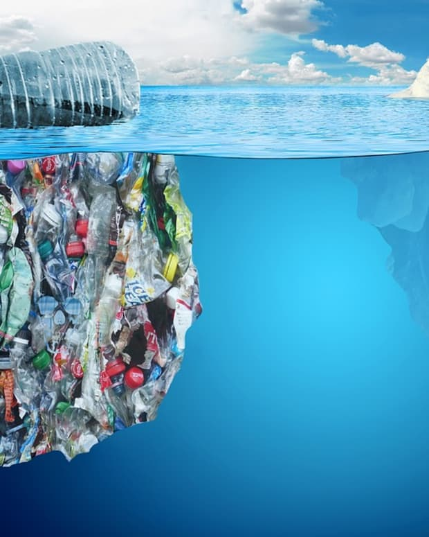 5-easy-ways-to-reduce-plastic-waste-and-pollution