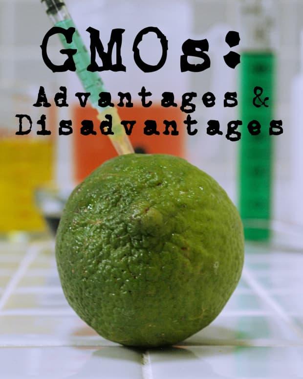 geneticallymodifiedfood