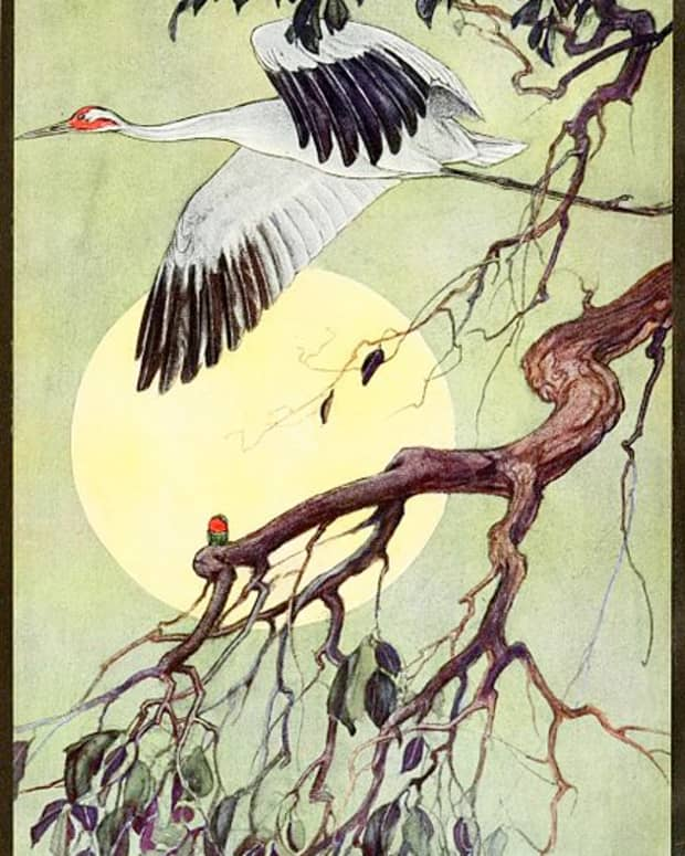 animal-spirits-totems-cranes