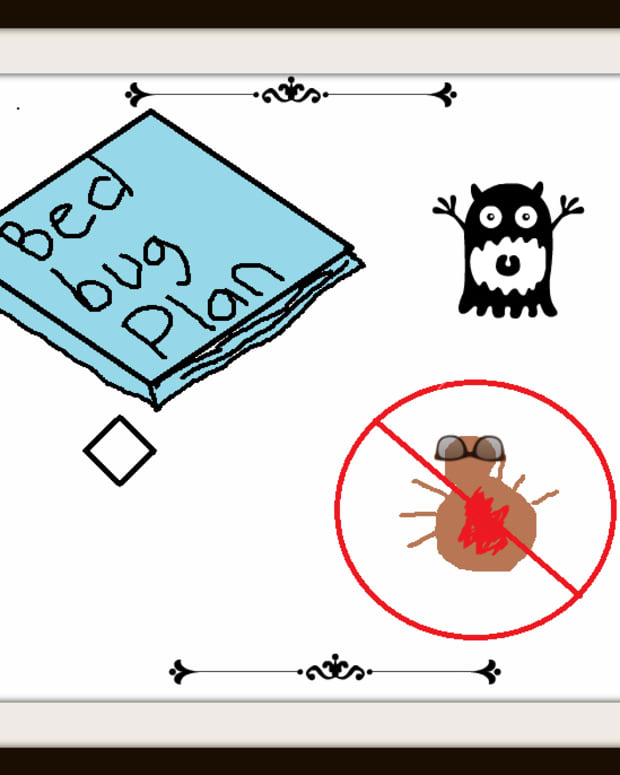 bed-bug-extermination-checklist