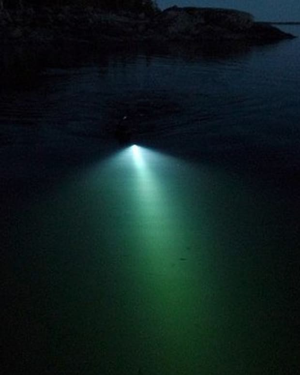 night-spearfishing-tips