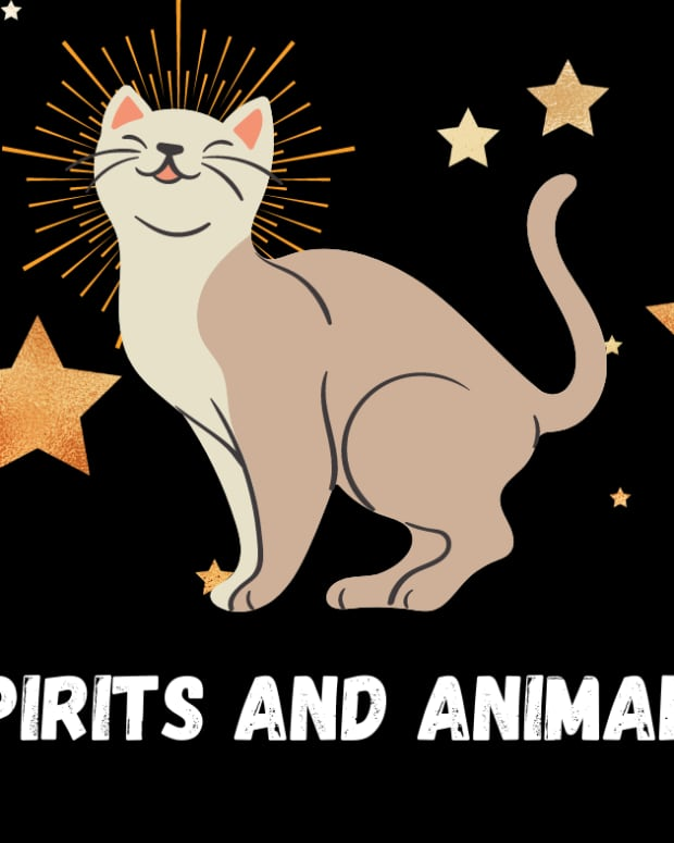 spirits-and-animals-totems-familiars-and-power-animals