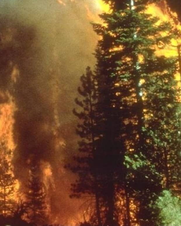decreasing-wildfire-risk-to-your-home-and-structures