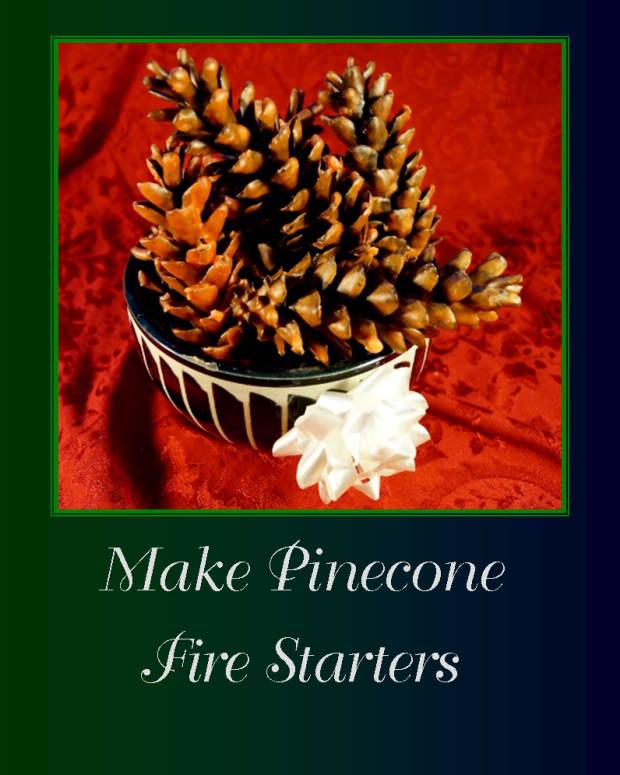 make-pinecone-fire-starters