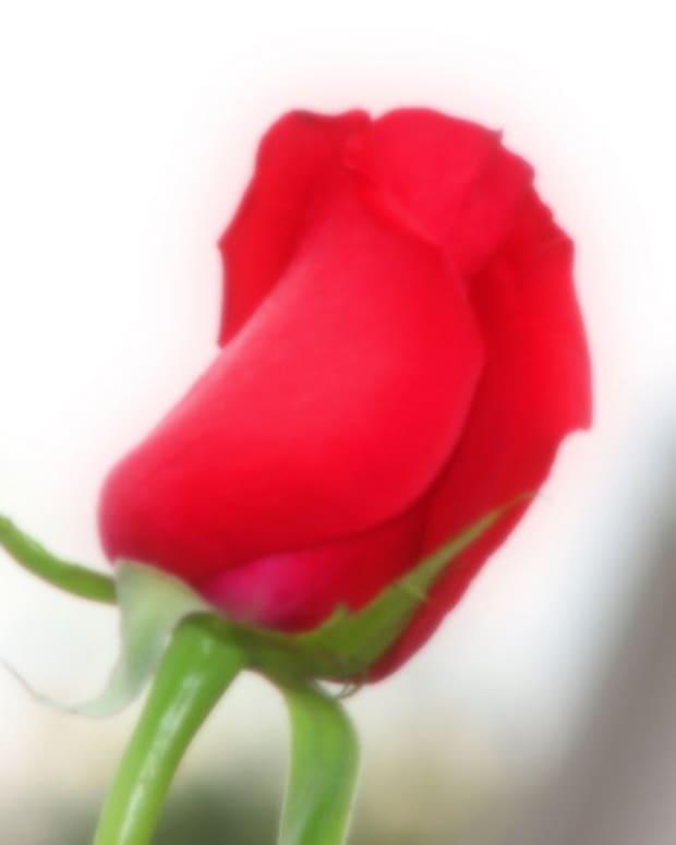 a-romantic-story-part-three