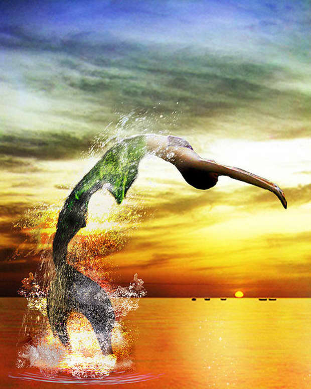 are-mermaids-real-aquatic-ape-theory-explains-real-life-mermaids