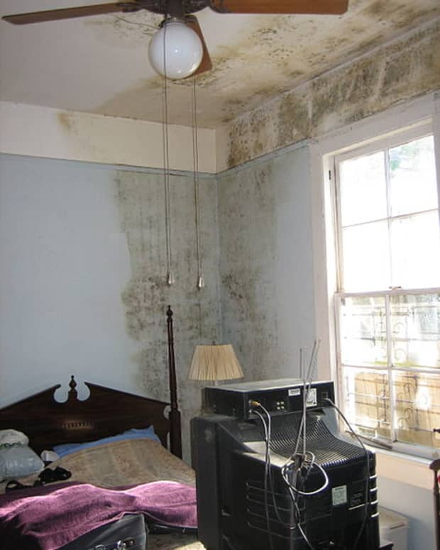 what-causes-damp-in-houses