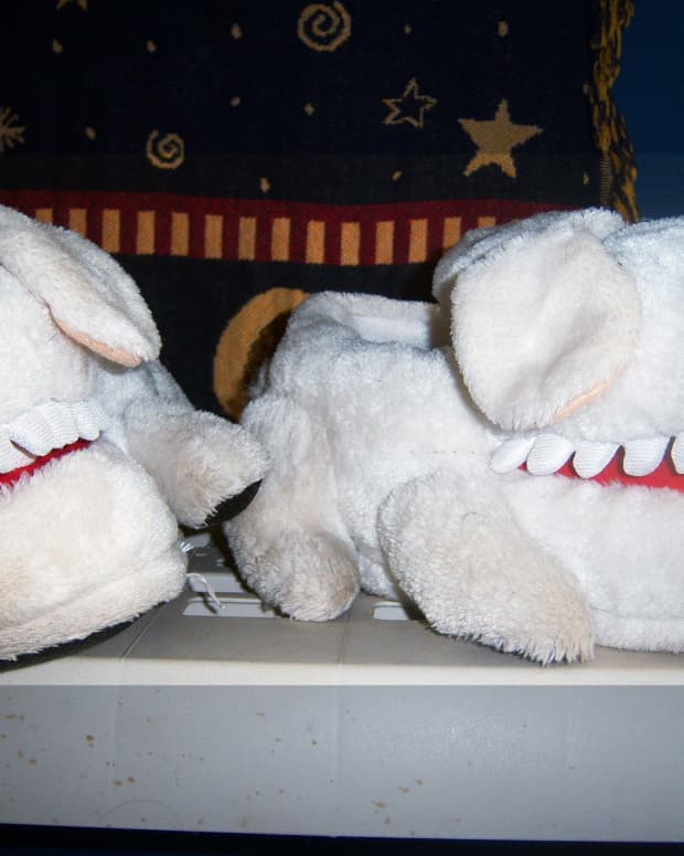 how-to-wash-plush-toys