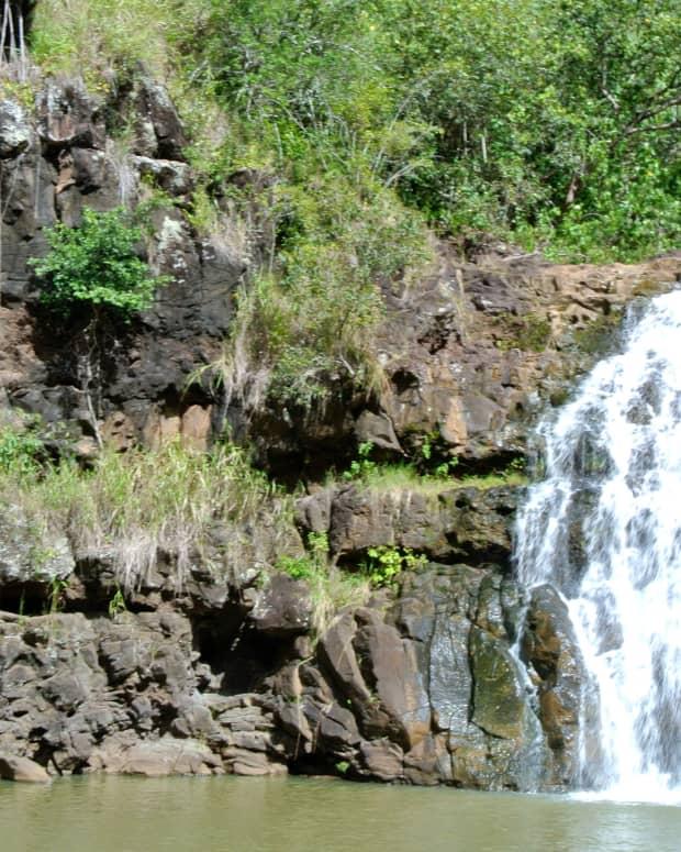waimea-falls-arboretum-and-botanical-gardens-things-to-do-on-oahu-hawaii