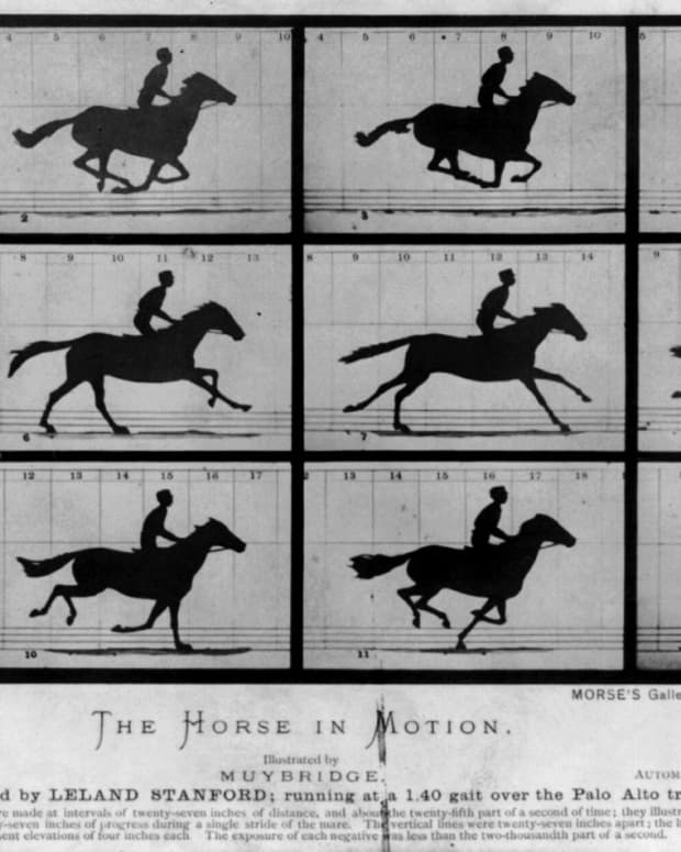 how-to-stay-balanced-while-horseback-riding-at-a-gallop