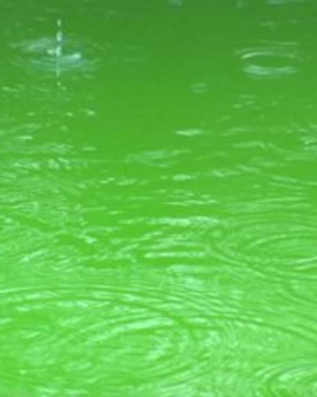 how-does-rain-affect-chemicals-in-swimming-pool-water