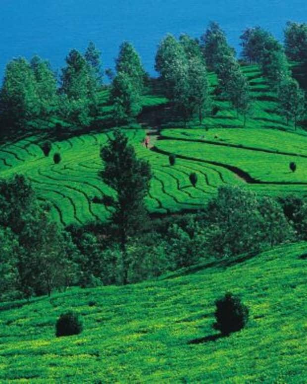 5-places-to-visit-in-karnataka-during-summer