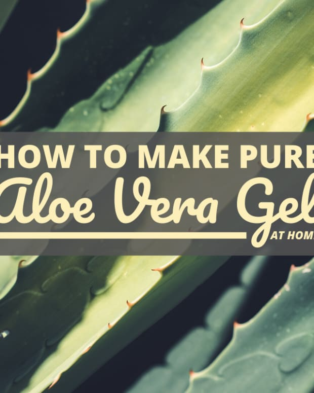 how-to-make-pure-aloe-vera-gel-at-home