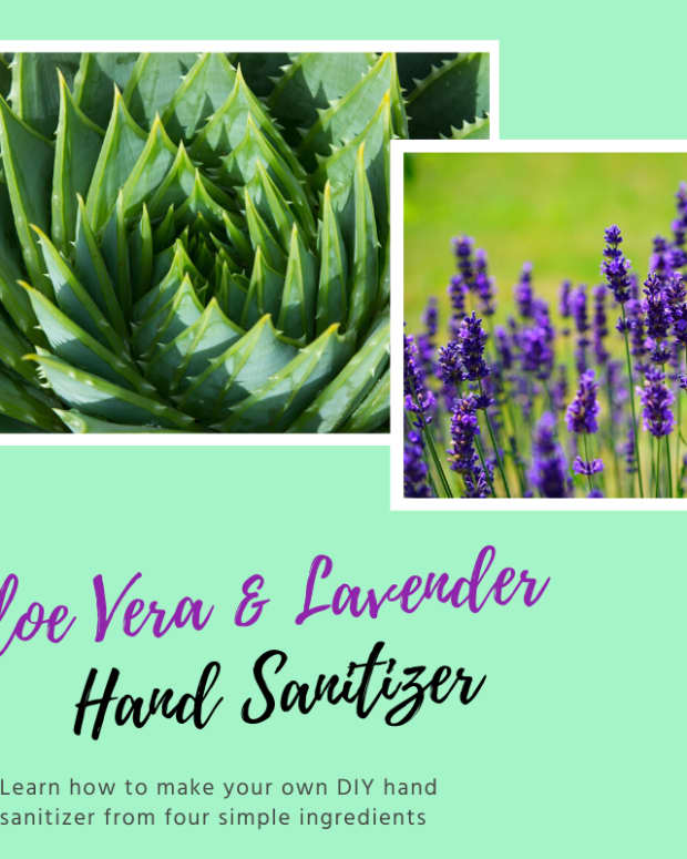 how-to-make-aloe-vera-and-lavender-hand-sanitizer