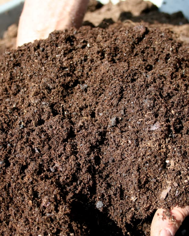 how-to-make-compost-at-home-a-practical-guide-to-building-your-own-compost-bin