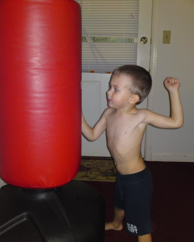 wave-master-free-standing-punching-bag-with-stand