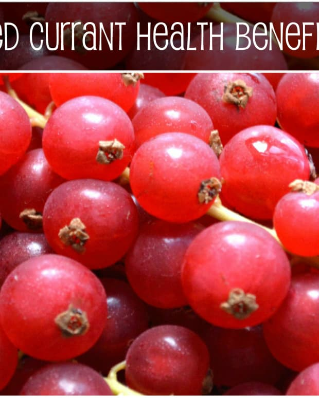 red-currant-health-benefits