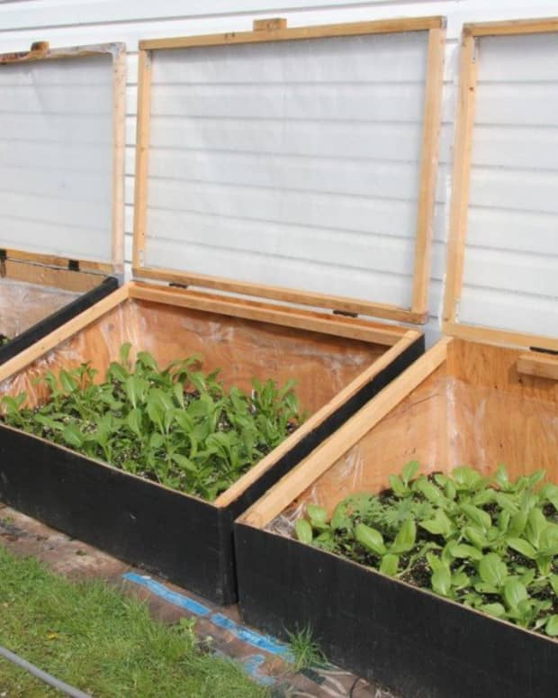 how-to-build-cold-frames-for-your-garden
