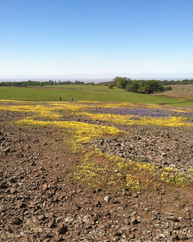 a-visit-to-table-mountain-oroville-california