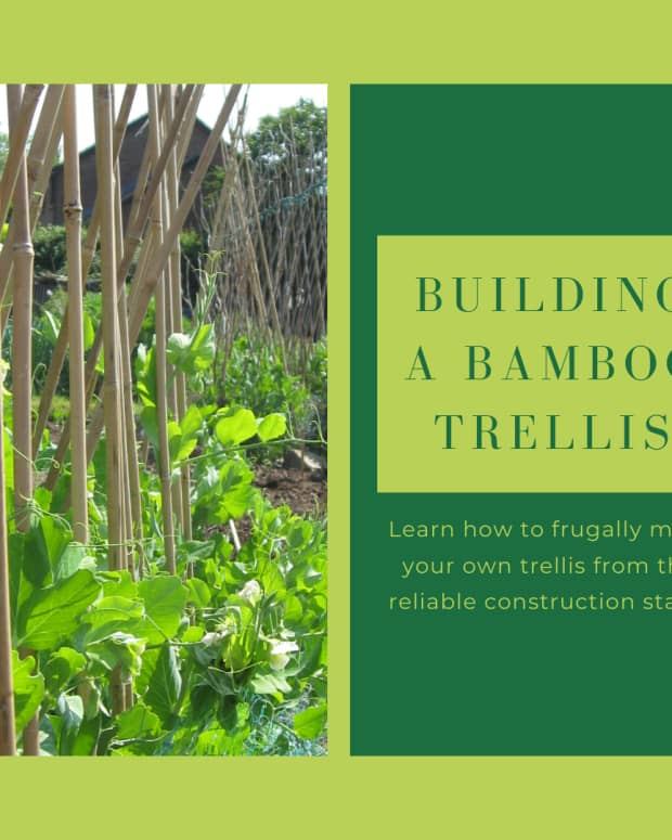 how-to-frugally-build-a-bamboo-garden-trellis
