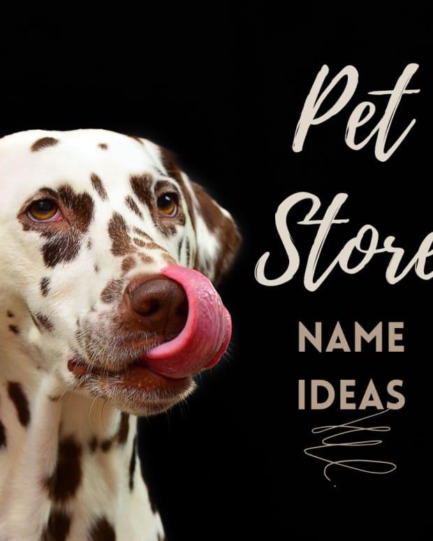 pet-store-names