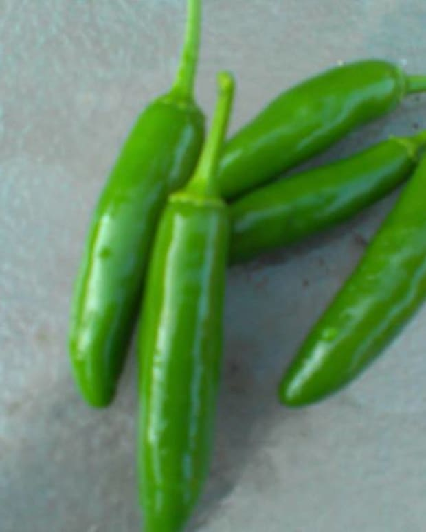gardening-guide-to-chili-peppers