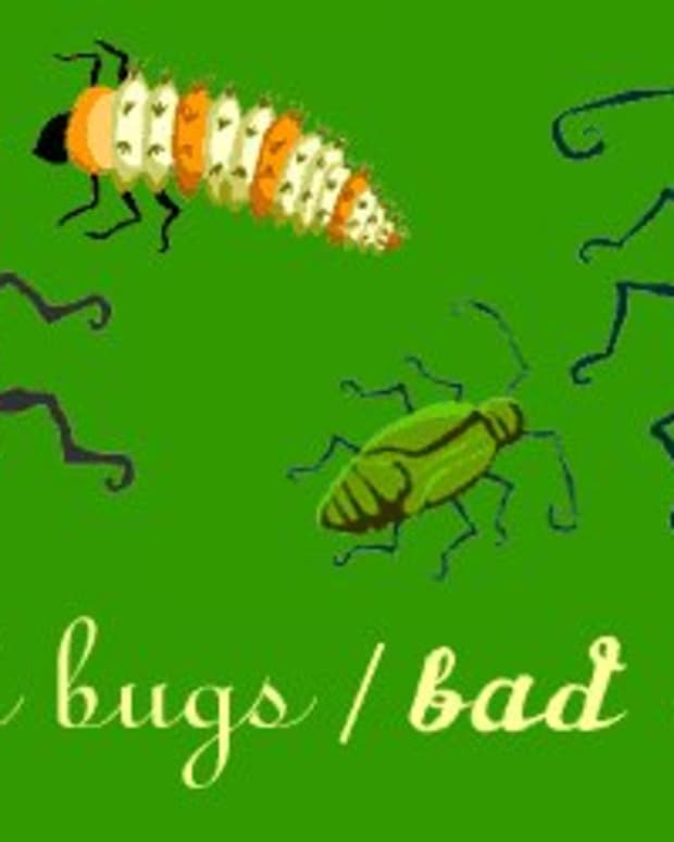 the-good-the-bad-and-the-bugly