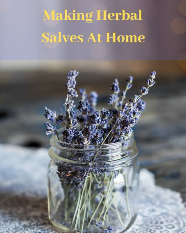 how-to-make-ointments-and-salves-for-the-home-first-aid-kit-for-cut-scrapes-burns-and-bruises