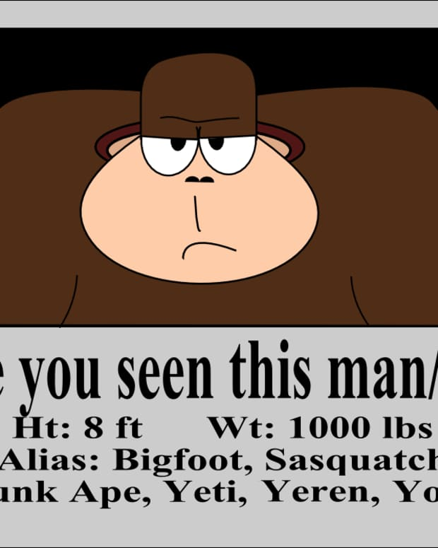 what-to-do-if-you-find-bigfoot
