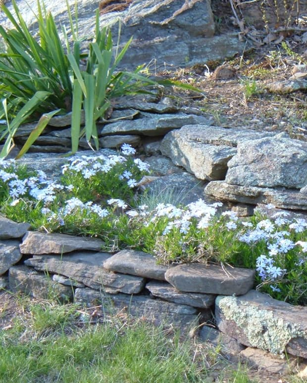 gardening-with-rocks-designing-a-rock-garden