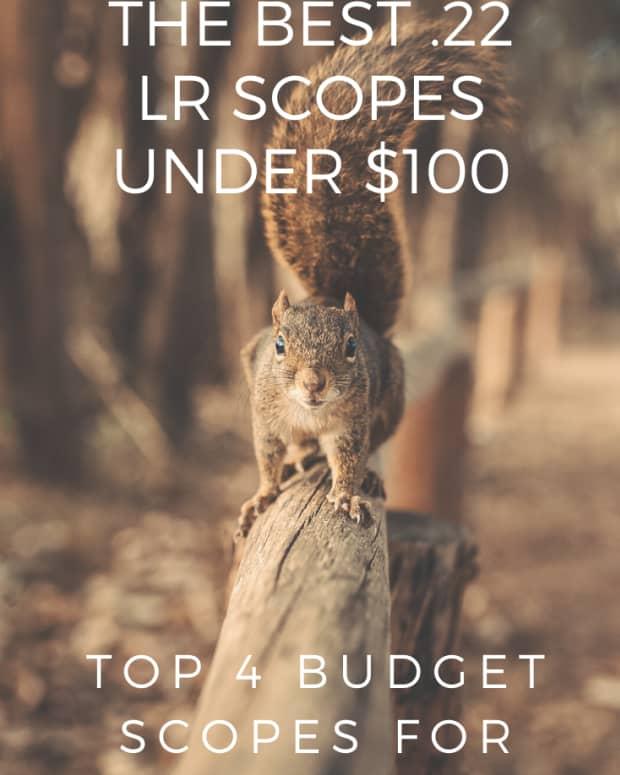 best-22-lr-rimfire-scopes