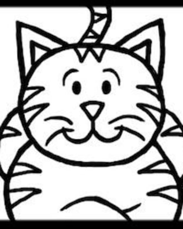 how-to-draw-a-cat-step-by-step-for-kids