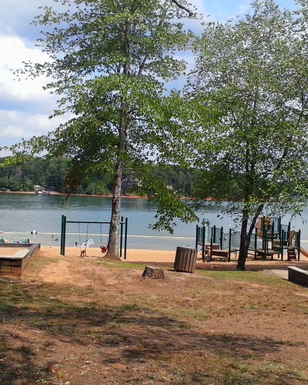 review-of-river-forks-recreation-area-on-lake-hartwell-in-anderson-sc