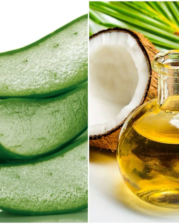 aloe-vera-vs-coconut-oil-benefits-and-uses-which-is-better