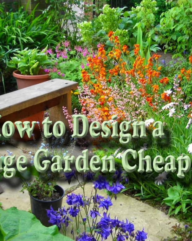 designing-small-front-garden