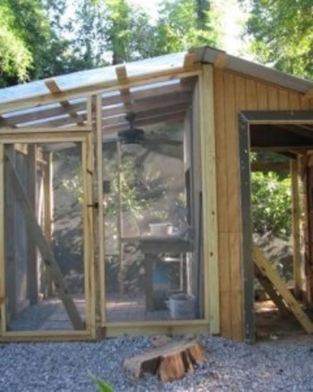 chicken-coop-greenhouse-construction