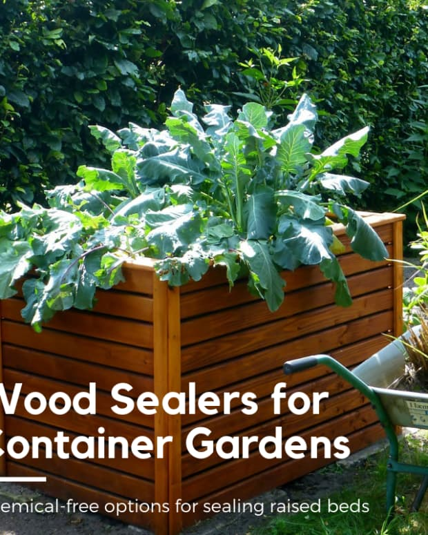 top-5-safe-wood-sealers-for-raised-bed-and-container-gardens