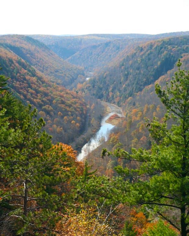 pine-creek-gorge-the-grand-canyon-of-pennsylvania