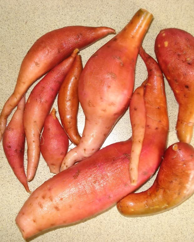 how-to-grow-sweet-potatoes-in-a-container