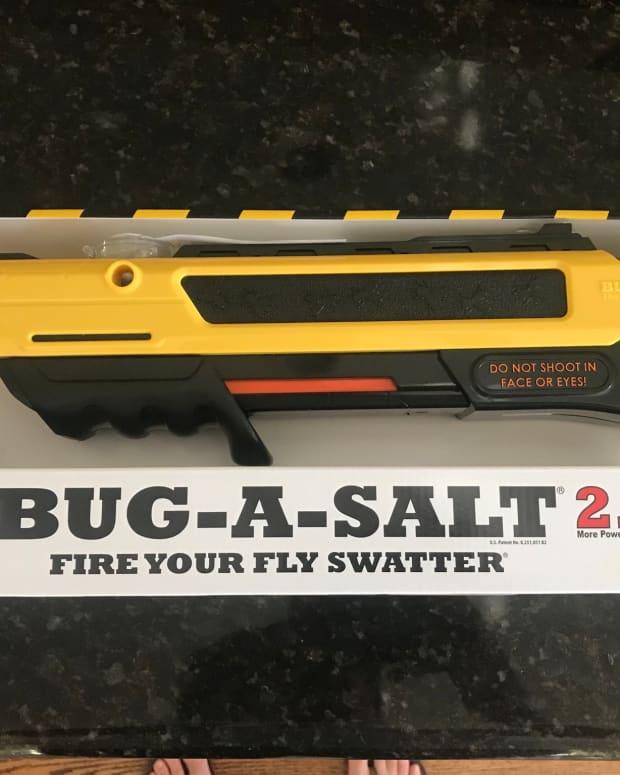 hands-on-with-the-bug-a-salt-20