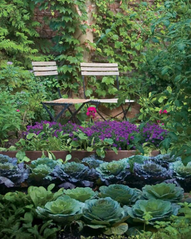 4-ways-to-enrich-your-garden-soil