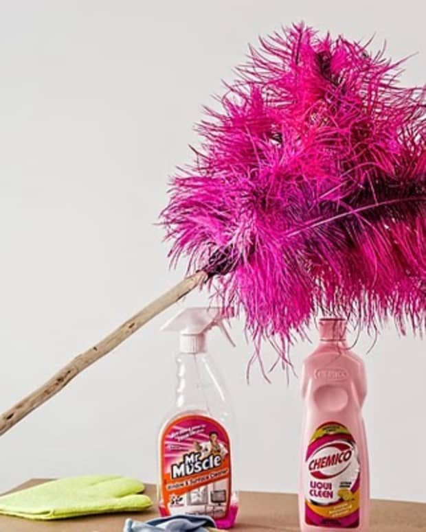 down-and-dirty-spring-cleaning-tips