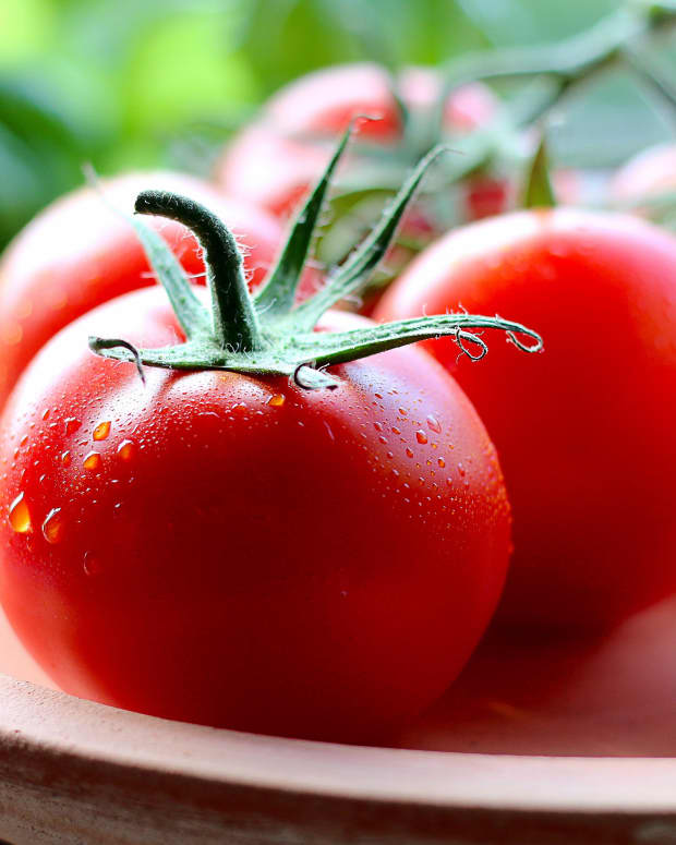 how-to-use-companion-planting-in-your-garden-and-3-amazing-combinations-you-should-try-if-you-are-growing-tomatoes