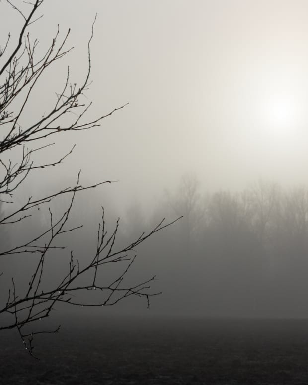 the-fable-of-the-boy-and-the-fog