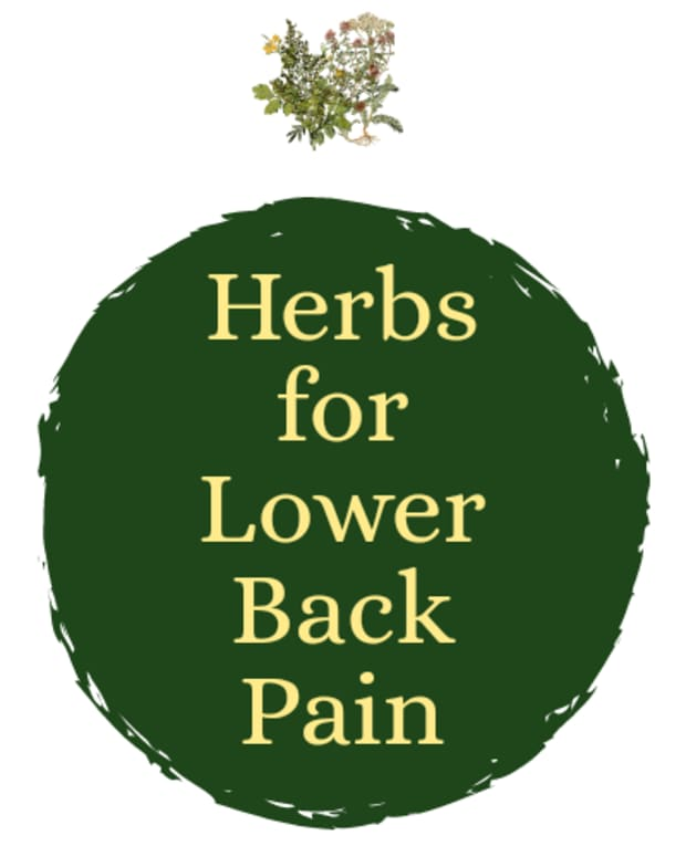 best-herbs-for-back-pain-relief