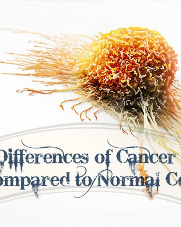 six-differences-of-cancer-cells-compared-to-normal-cells