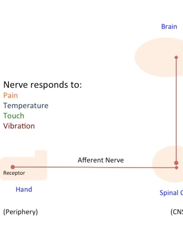 what-is-neuropathic-pain