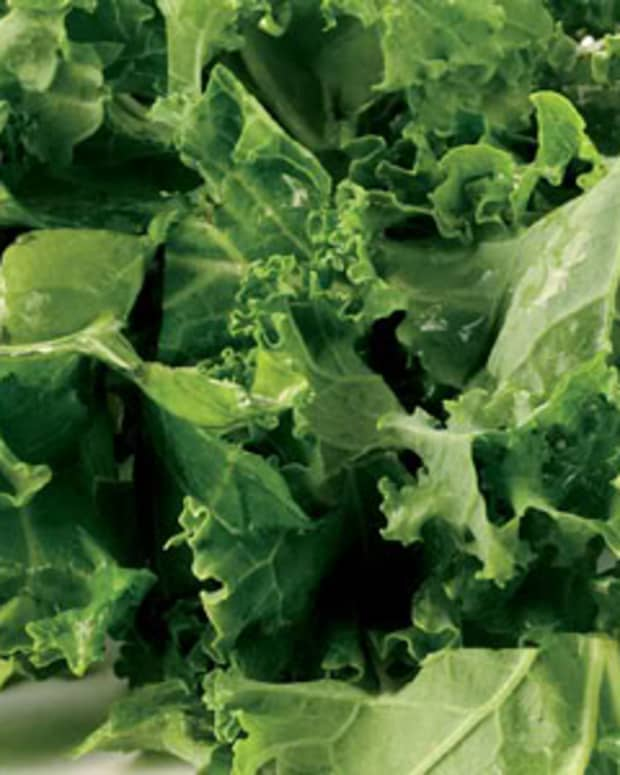go-green-by-eating-leafy-green-vegetables-in-your-meals
