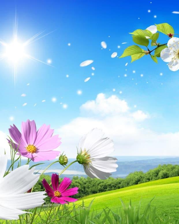 summer-breeze-haiku